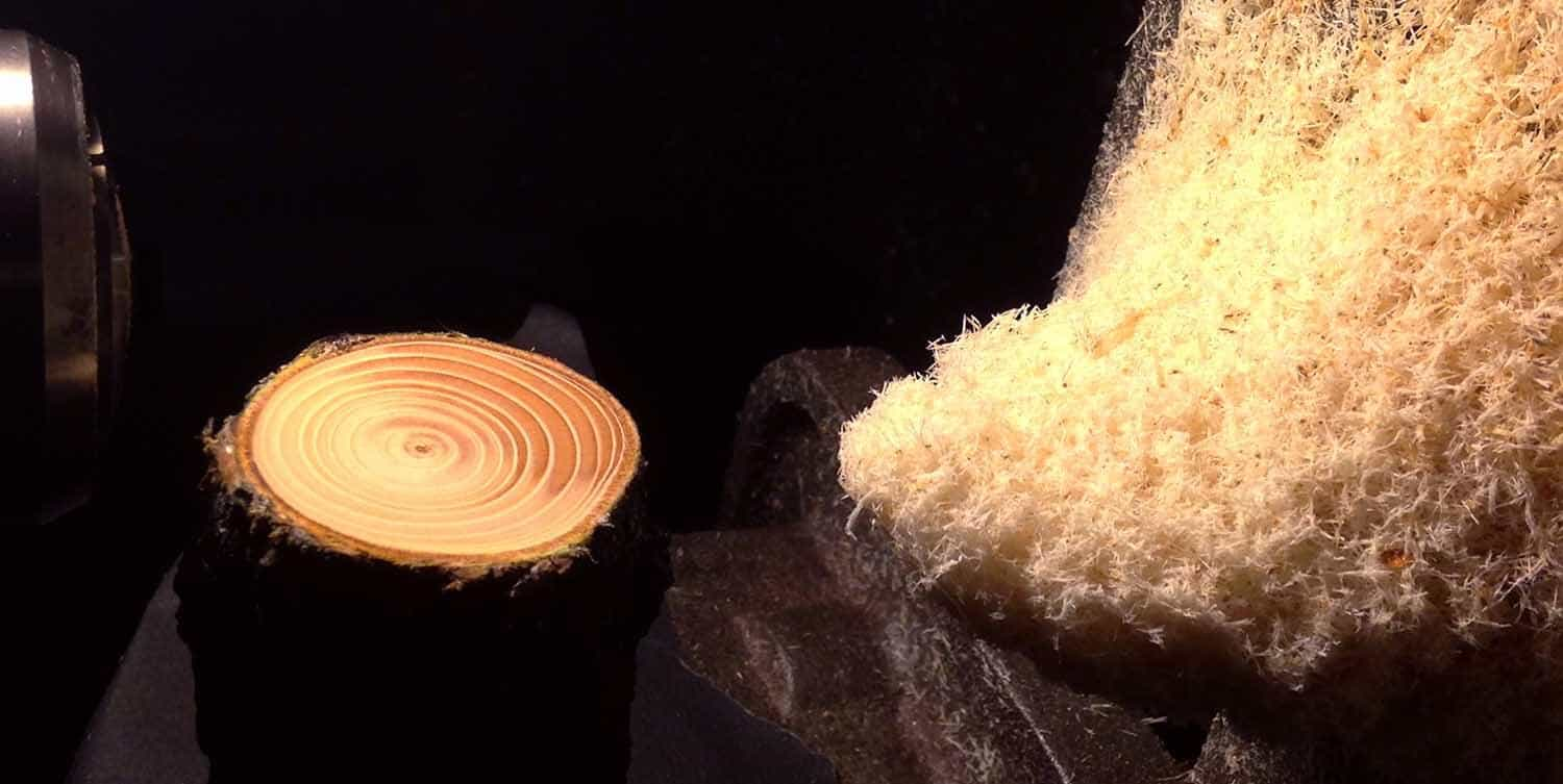 hout in stop-motion